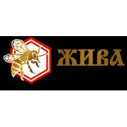 ООО «Жива»